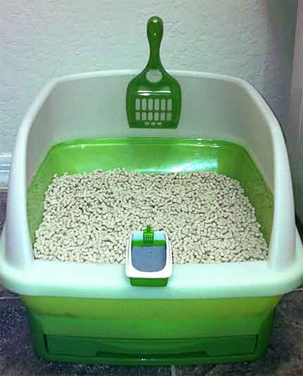 How to choose cat litter