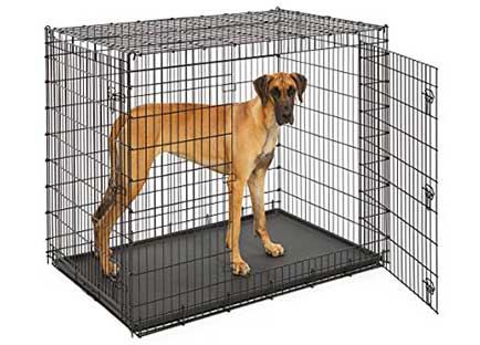 Best dog crate reviews - Midwest solution series ginormous double door dog crate