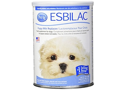 Is milk bad for a dog - Esbilac lactose free milk