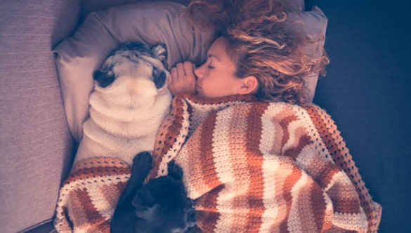 Sleeping with your dog benefits
