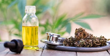 Benefits of CBD Oil Spray for Dogs