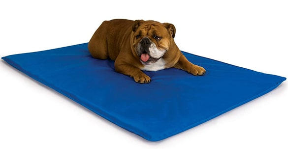 How to Make Dog Cooling Mat