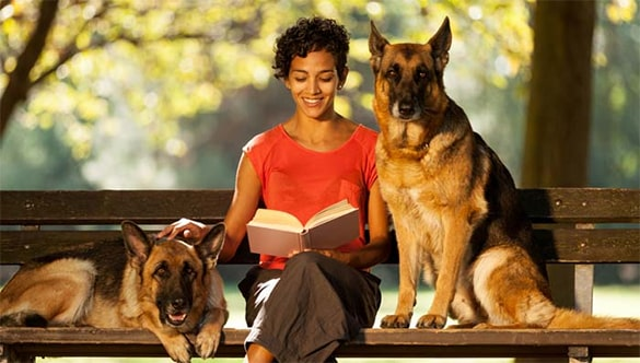 Benefits of Using Pet Sitting Service