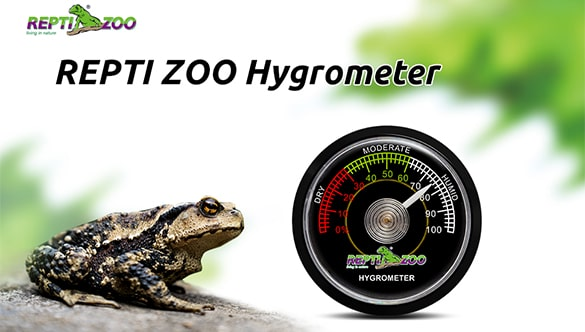 Tips for Reptile Hygrometer & Humidity Gauge Use for Terrariums