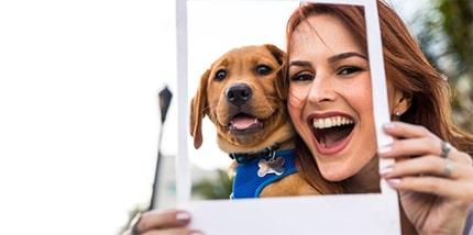 Ways To Memorialize Your Beloved Dog