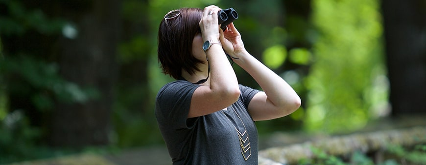 Avoid the Most Common Bird Watching Mistakes